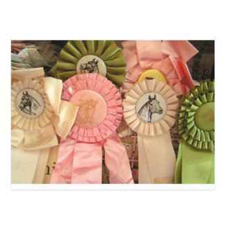 Horse Ribbon Postcards Horse Lovers