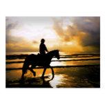 HORSE RIDER ON BEACH POSTCARDS