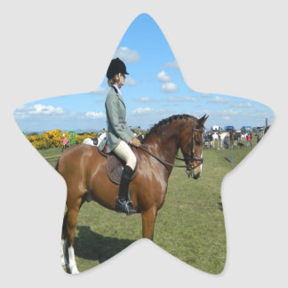 horse rider ready for the next success star sticker