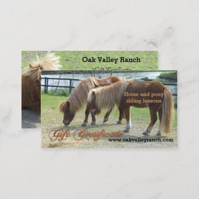Horse riding lessons gift certificate template zazzle yadclub Images