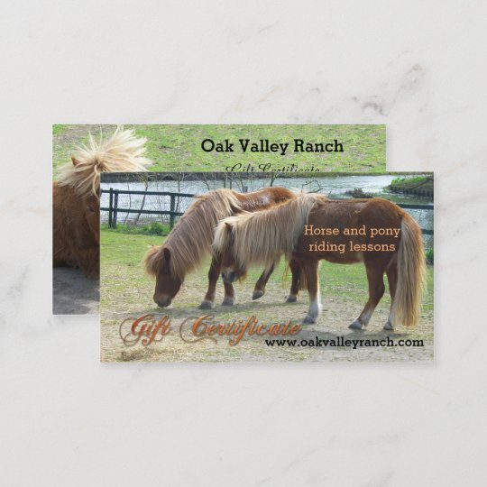 Horse riding lessons gift certificate template zazzle horse riding lessons gift certificate template yelopaper Choice Image