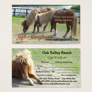 horse riding lessons qr gift certificate template 325584 - Horseback Riding Lesson Gift Certificate Template