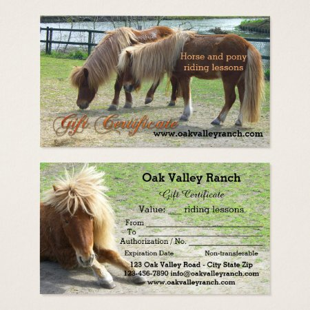 horse riding lessons gift certificate template 026036. Black Bedroom Furniture Sets. Home Design Ideas