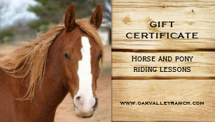 horse riding lessons gift certificate template - Horseback Riding Lesson Gift Certificate Template