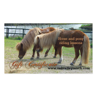 Horse Riding Lessons Gift Certificate Template Business Card Template