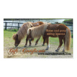 Horse Riding Lessons Gift Certificate Template Double-Sided Standard Business Cards (Pack Of 100)