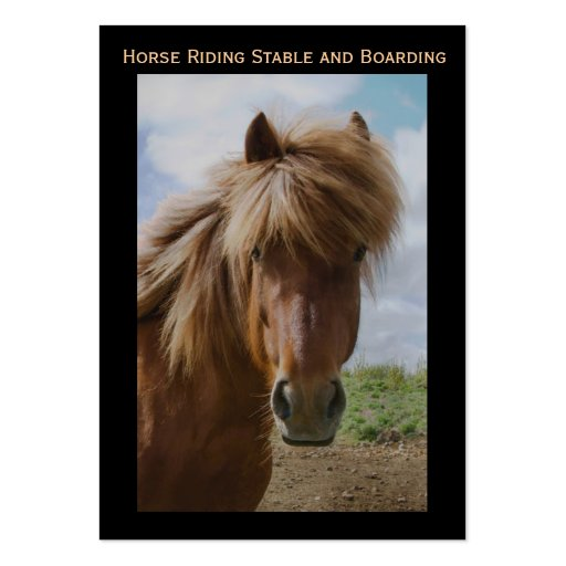 Horse Riding Stable and Boarding Business Card