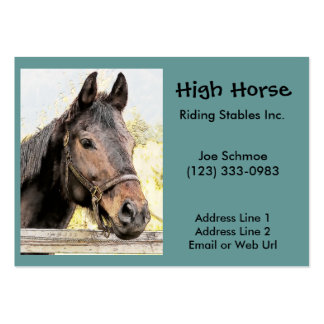 Horse Riding Stables Business Card