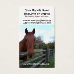 Riding stable business cards templates zazzle horse riding stables or boarding services business card yadclub Images