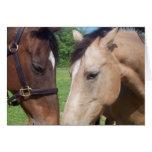 Horse Romance Greeting Card