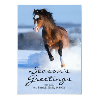 Horse running across the field in winter card