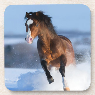 Horse running across the field in winter drink coaster