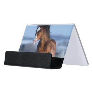 Horse running across the field in winter desk business card holder