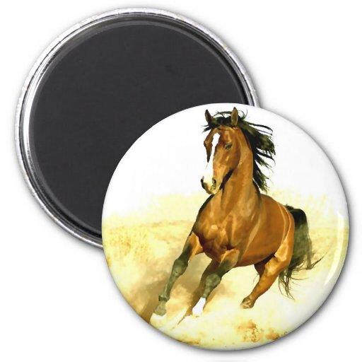 Horse Running Fridge Magnets