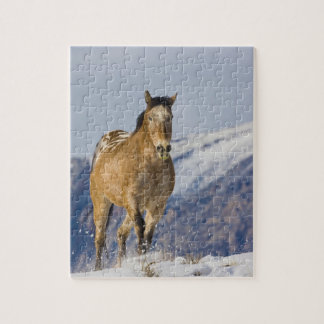 Horse Running in Snow 2 Jigsaw Puzzle