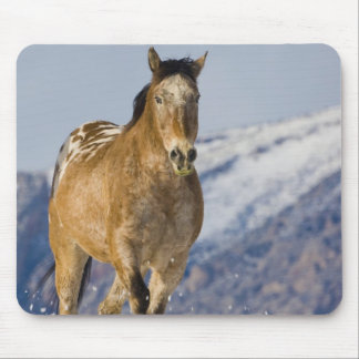 Horse Running in Snow 2 Mouse Pad