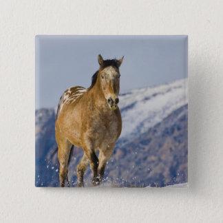 Horse Running in Snow 2 Pinback Button