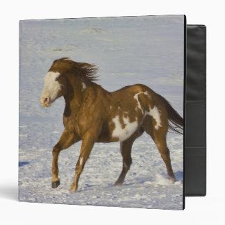 Horse Running in Snow Vinyl Binders