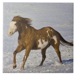 Horse Running in Snow Ceramic Tile