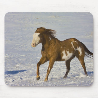 Horse Running in Snow Mouse Pad