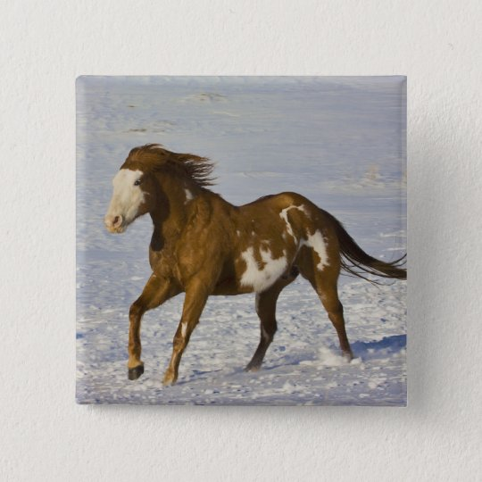 Horse Running in Snow Pinback Button