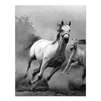 Horse Running Personalized Invite