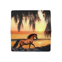 Horse running on sunset beach checkbook cover