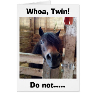 HORSE SAYS WHOA TWIN DON'T CELEBRATE YET CARD