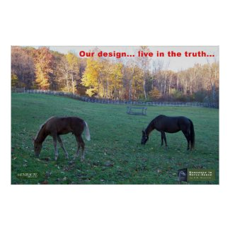 Horse Sense - Our Design - Live in the Truth Poster