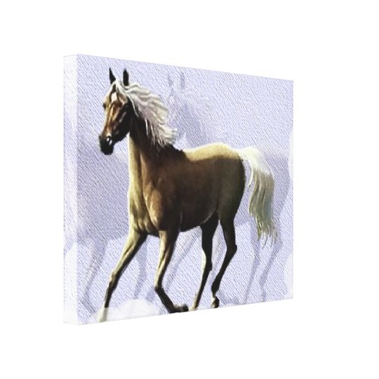Horse Shadow Canvas Print