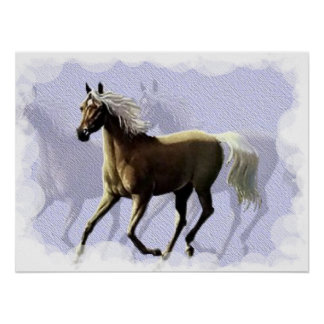 Horse Shadow Poster