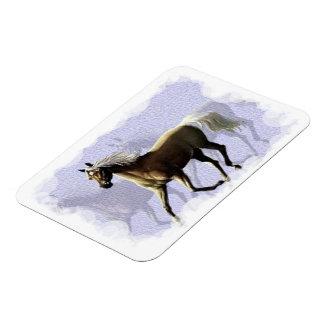 Horse Shadow Premium Magnet (2) sizes