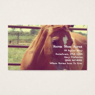 Horse Shoe Acres Soft Focus Sorrel Business Card