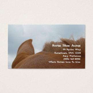 Horse Shoe Acres Sorrel Horse Business Card