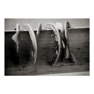 Horse Shoes Poster