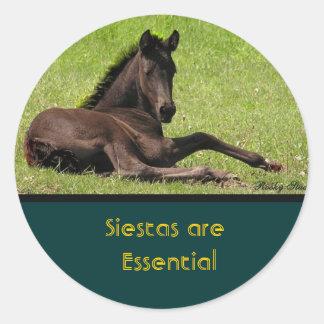 Horse Siesta Stickers