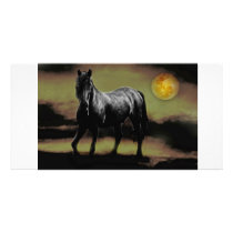 Horse silhouette by Moonlight Card