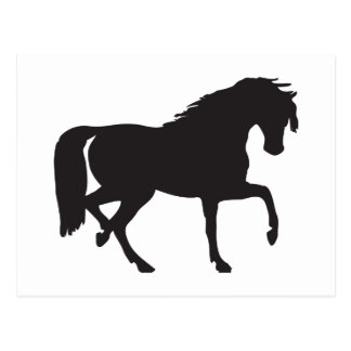 Horse Silhouette - Change background color! Postcard