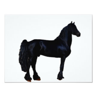 Horse silhouette in black and white card