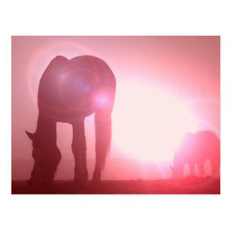 Horse Silhouette Postcard