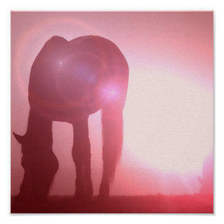Horse Silhouette Poster Print