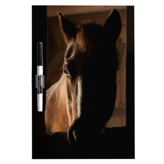 Horse Silhouetted in Barn Stall Dry Erase Board