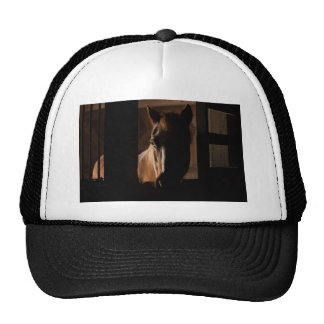 Horse Silhouetted in Barn Stall Trucker Hat