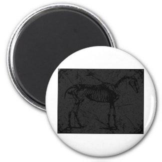 Horse skeleton dark gray magnet