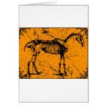 Horse Skeleton Orange Cards