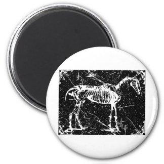 Horse skeleton white 2 inch round magnet