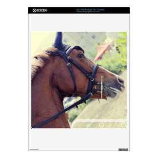 Horse Decal For PS3 Slim