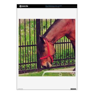 Horse PS3 Slim Decals