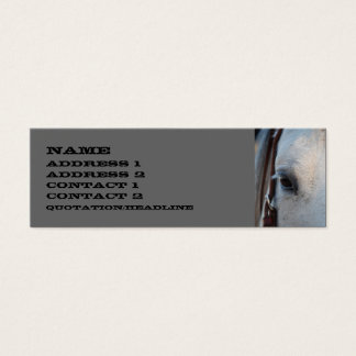 Horse Skinny Business Card