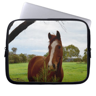 Horse_Sniff_10_inch_Laptop_Sleeve Laptop Sleeve